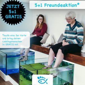 Hannover Wellness, Gutscheinidee, Fischpediküre, Gara Rufa, Doctorfische, Knagalfische